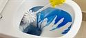 Test sui detergenti specifici per wc