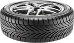 BF GOODRICH g-Force Winter | Classifica Pneumatici Invernali 225/45 R 17 | Altroconsumo